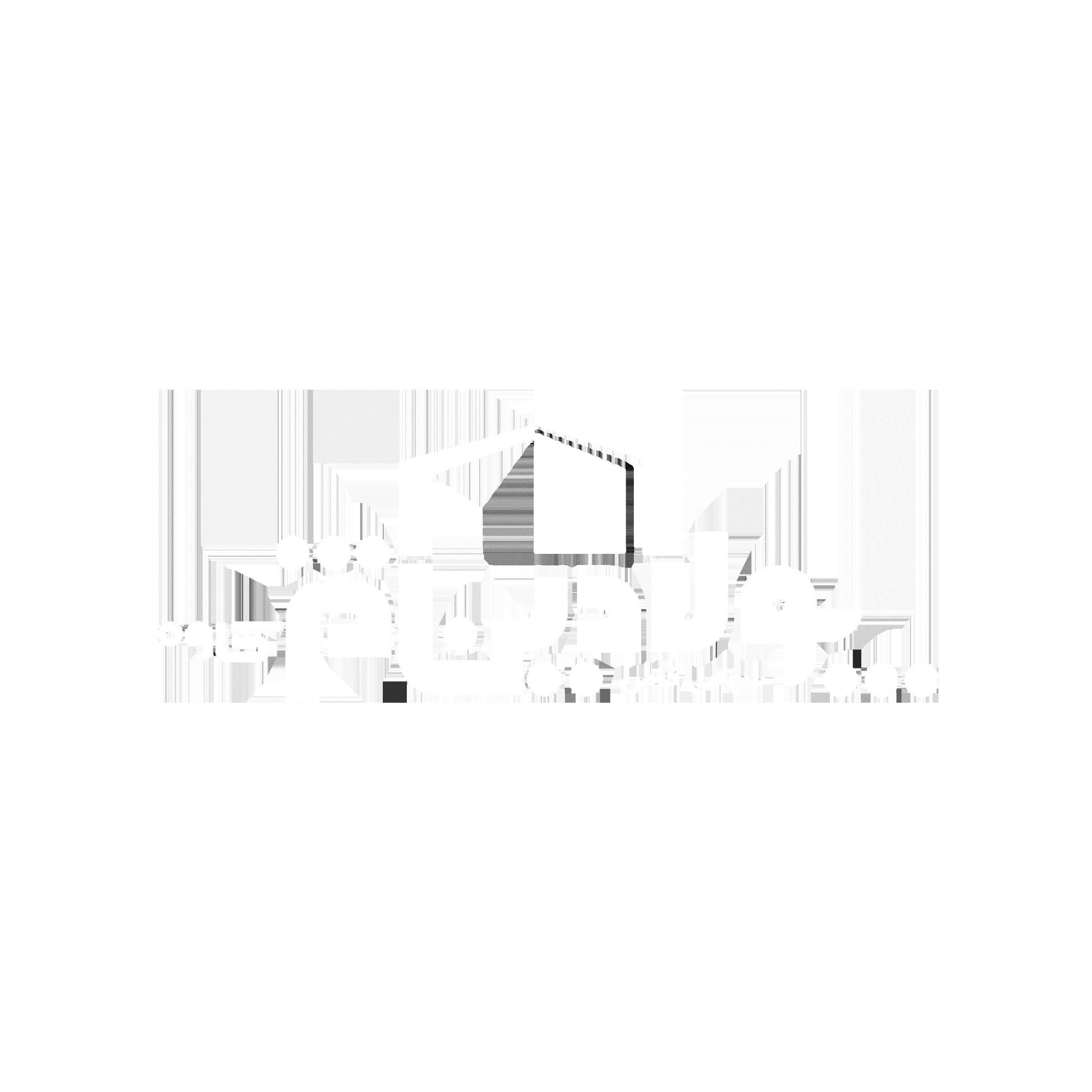 logo – puladin dejh